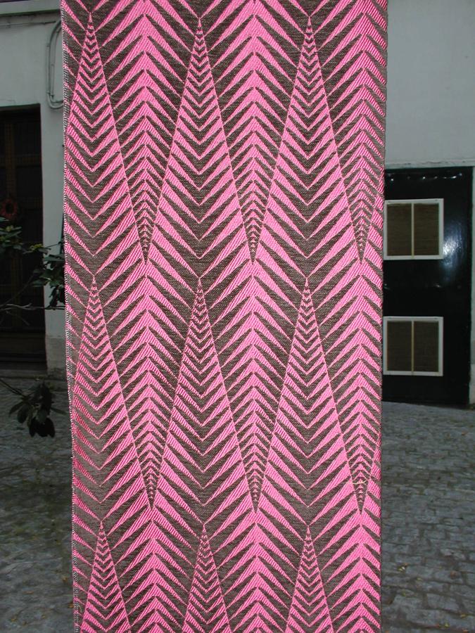 Zebra Raspberry